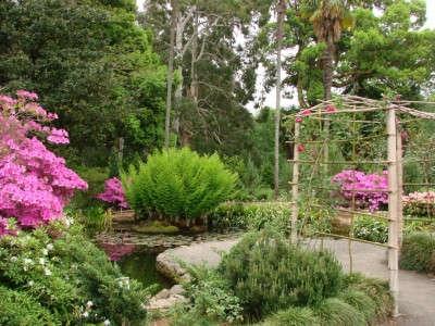 باغ گیاهشناسی تفلیس