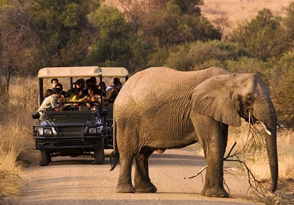 pilanesberg-park