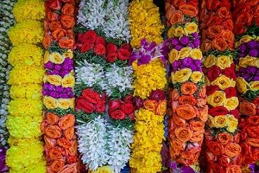 حلقه گل هند