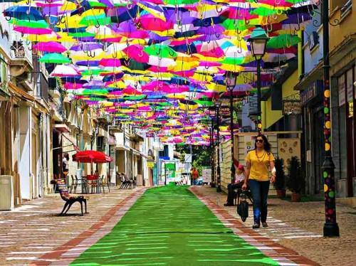 برترین فستیوالها