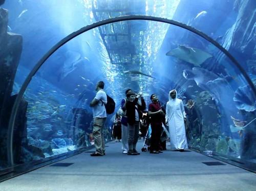 جاذبه های امارات