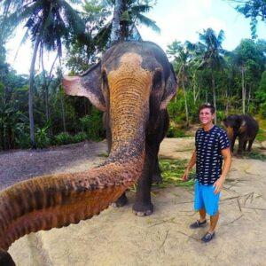سلفی با فیل