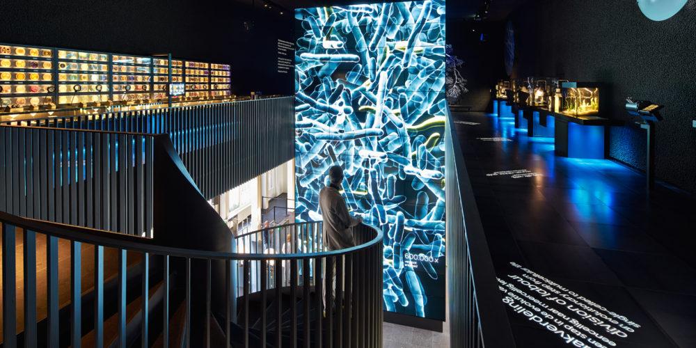 micropia_overzicht_museum