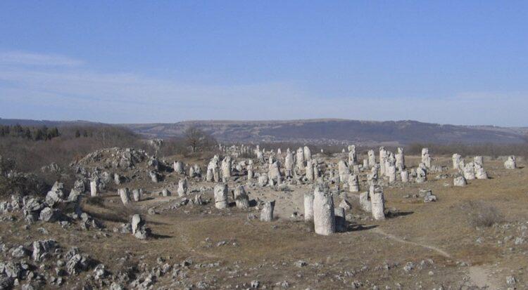 جنگل سنگ در بلغارستان