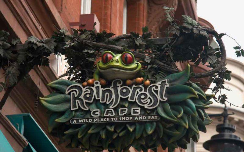 8-Rainforest-Cafe