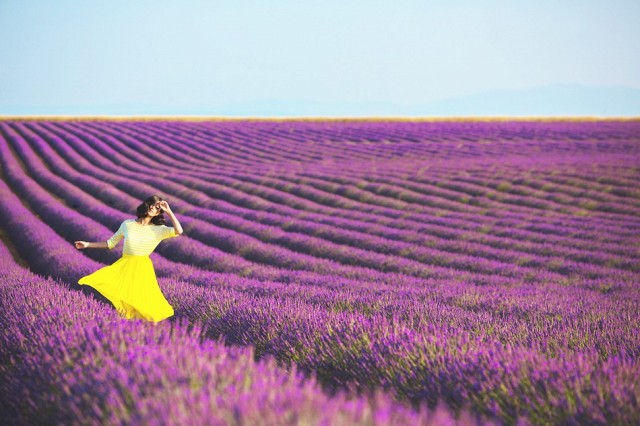 breathe-in-the-lavender