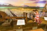 ۱۵ جاذبه ای که در لنکاوی با کودکانتان لذت می برید (بخش دوم)