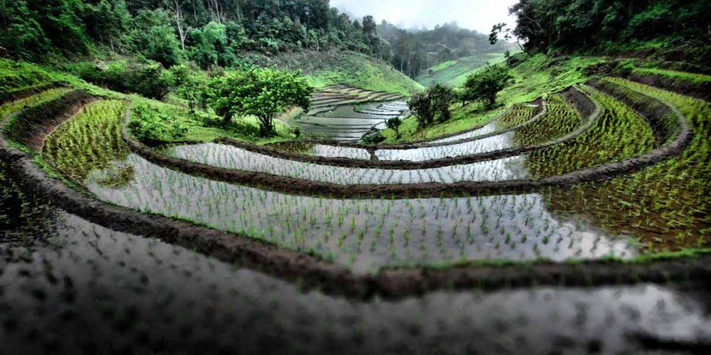 northern-Thailand