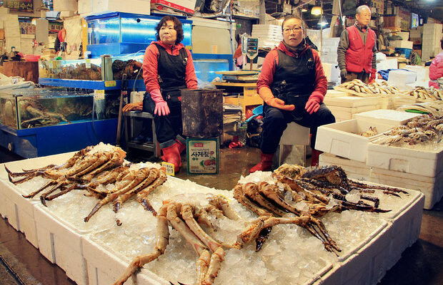 10-amazing-things-to-do-in-seoul-south-korea-fish-market-sabrina