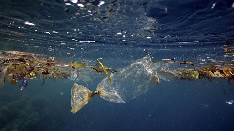 زباله ها را به دریا نیندازیم