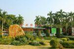 عجیب ترین گیاهان دنیا را در باغ گیاه شناسی چین ببینید!