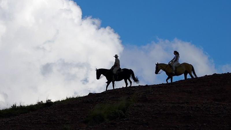 قهرمانان بر اسب در هند