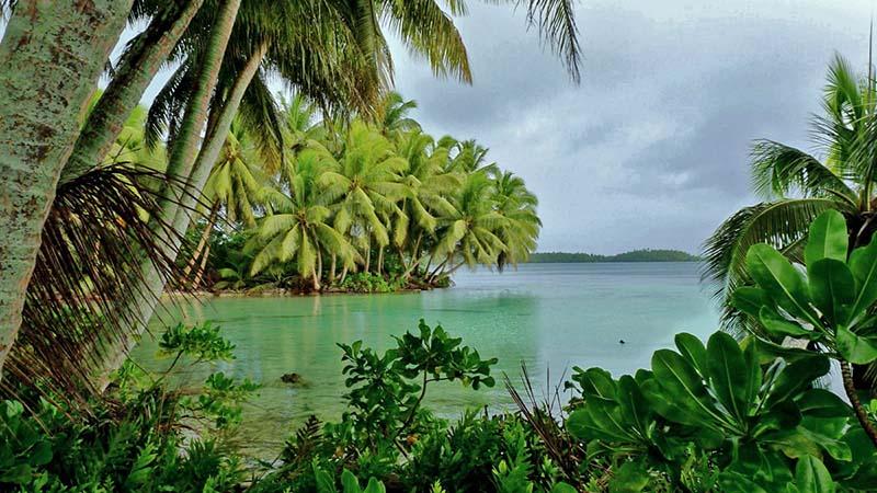 جزیره پالمیرا