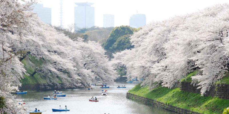 ueno-park-original-1358