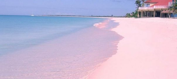 ساحل بارابودا