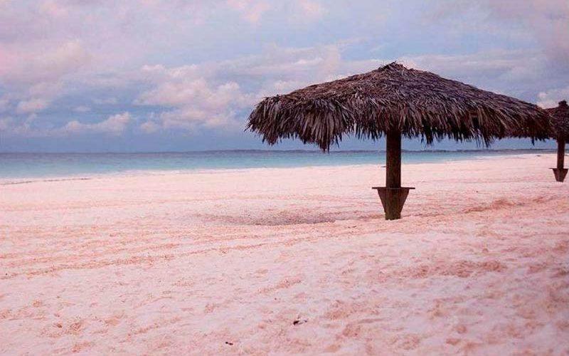 جزیره هاربور