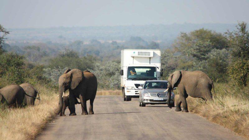 ایمنی در جاده های آفریقای جنوبی