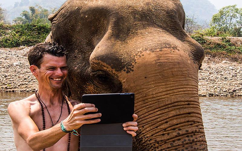 سلفی با فیل در هند
