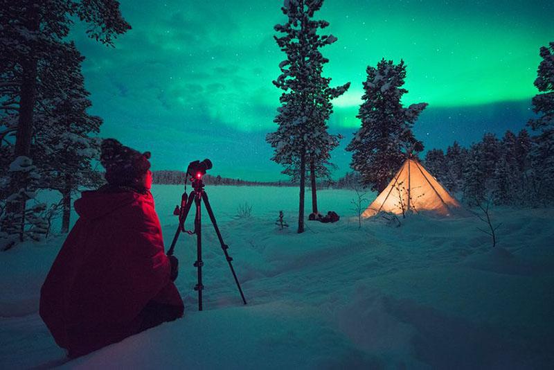 عکاسی حیات وحش سوئد | گردشگری