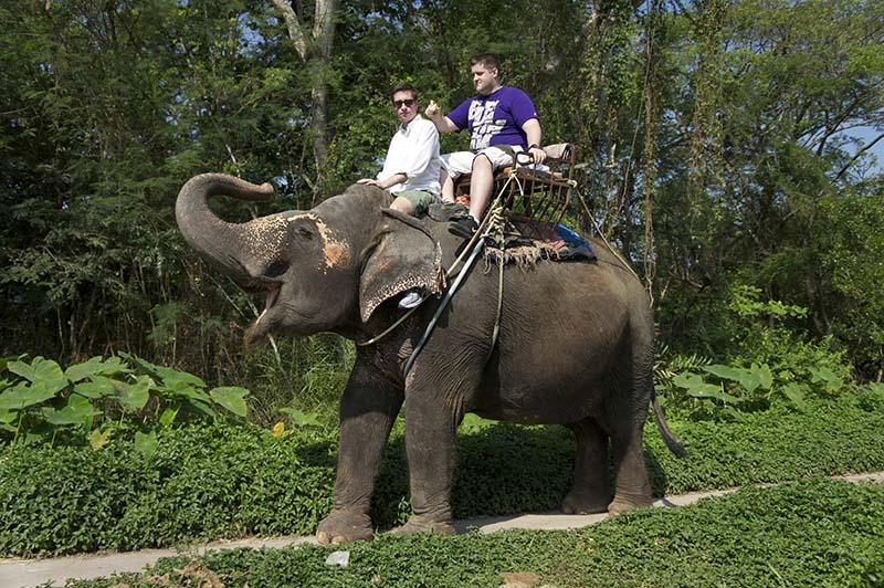 دستورات پا برای فیل سواری | تایلند