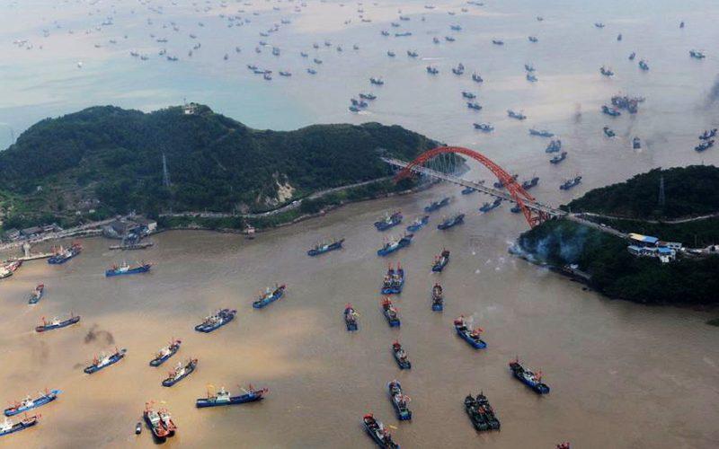 قایق های ماهی گیری