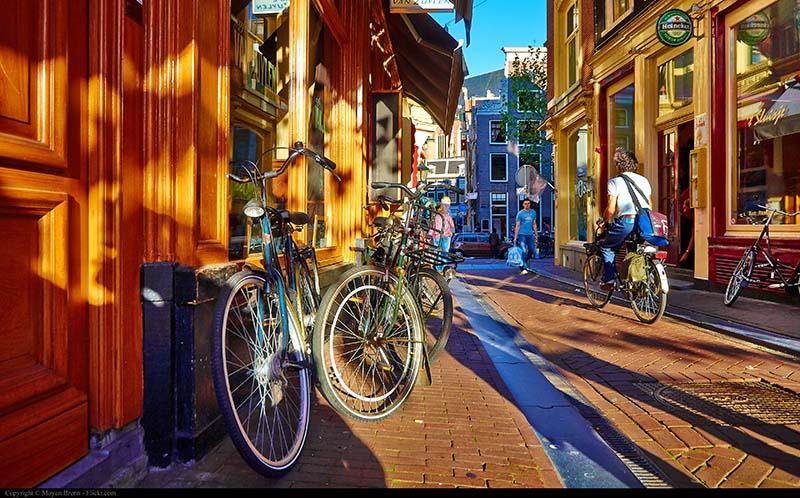 دوچرخه سواری   تور هلند