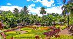 نونگ نوچ، بزرگترین باغ گیاه شناسی جنوب شرق آسیا