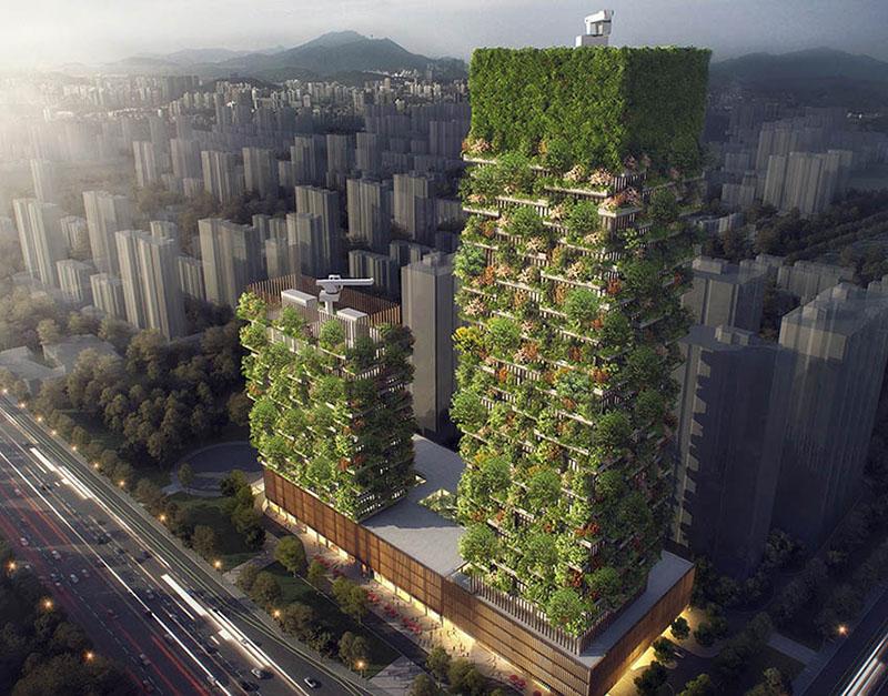 جنگل های عمودی در چین