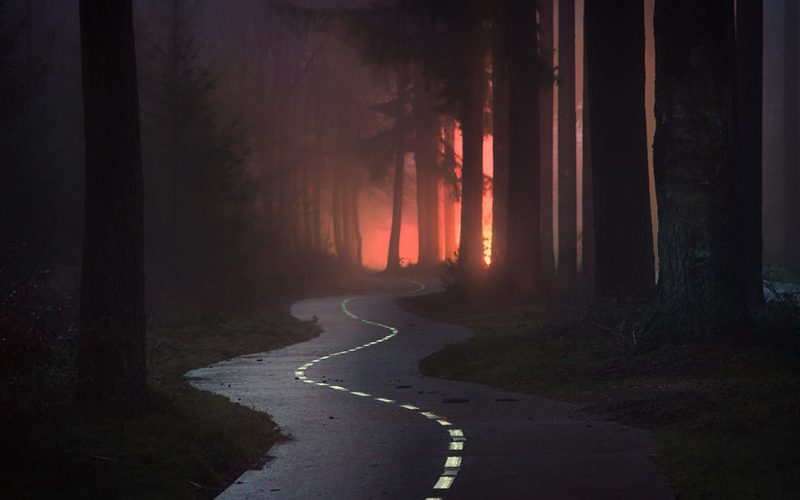 مسیری زیگ زاگ در جنگل