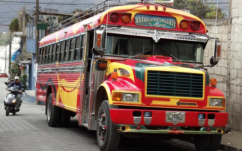 اتوبوس مرغی
