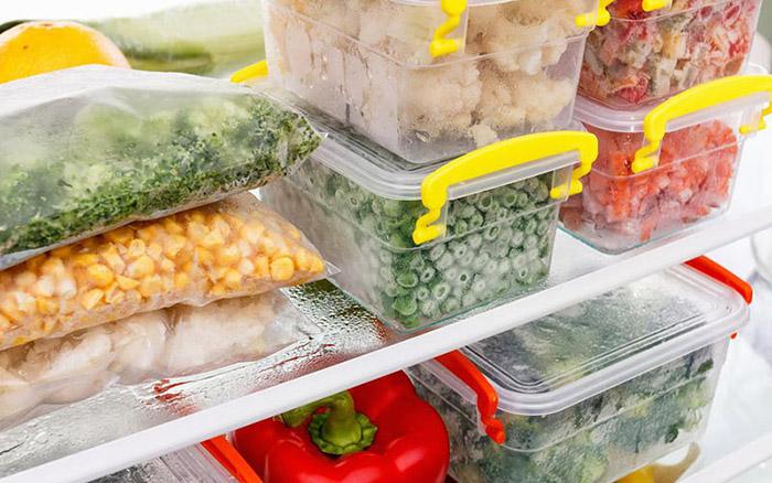منجمد کردن مواد غذایی قبل از سفر