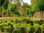 معرفی باغ جنت شیراز
