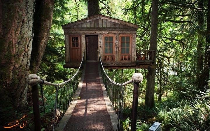 هتلی بر روی درختان