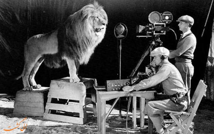 شیر استودیو فیلمسازی MGM
