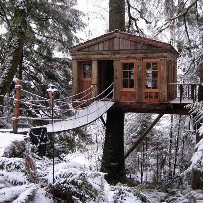 هتل درختی در زمستان