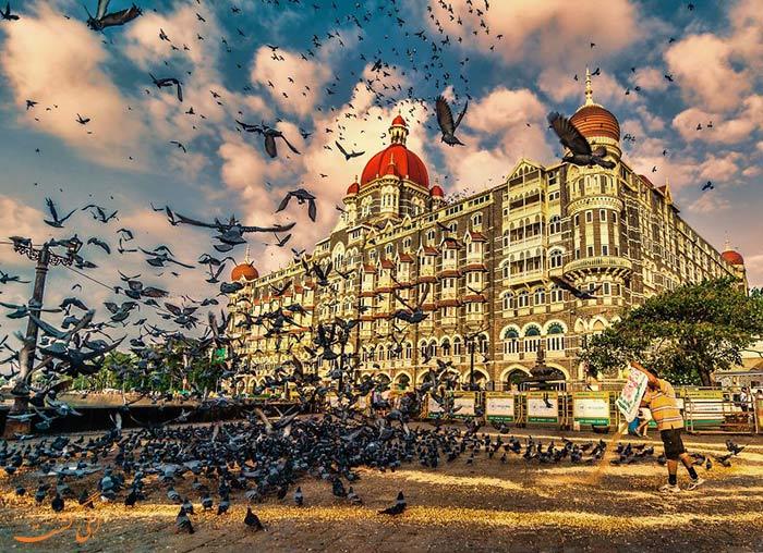 پرندگان دروازه هند