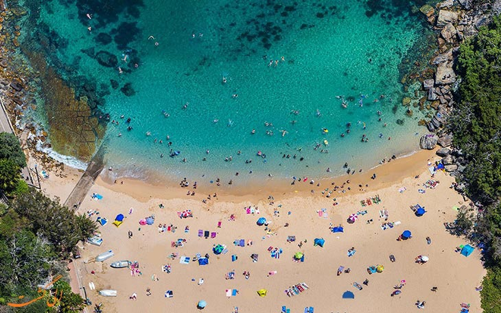 ساحل شلی