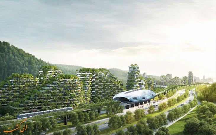 پروژه جنگل سازی در چین