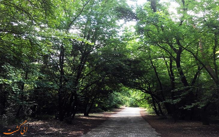 پارک ملی مارماریس