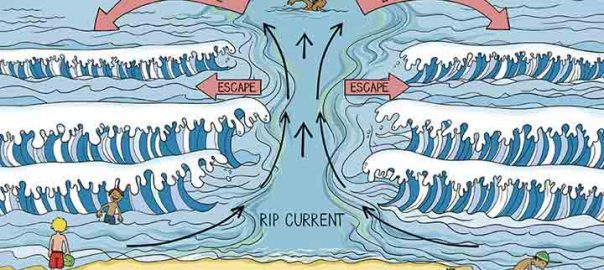 مرگ و میر دریا