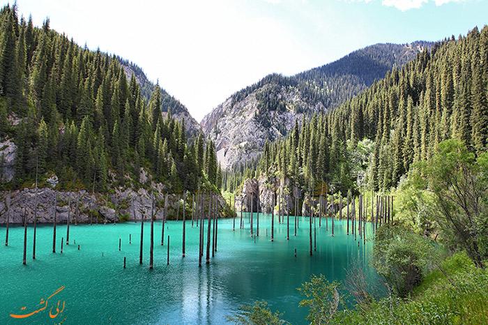 جنگل های زیر آب قزاقستان