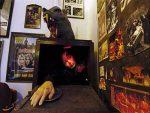 موزه دراکولاها در فرانسه! + تصویر