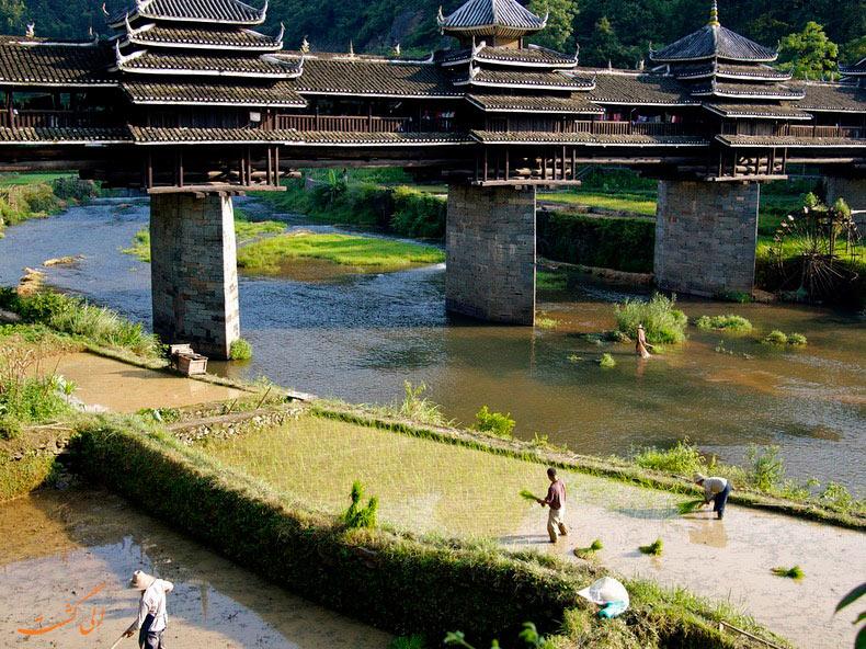 عکس پل های باد و باران