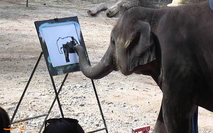 نقاشی کشیدن فیل
