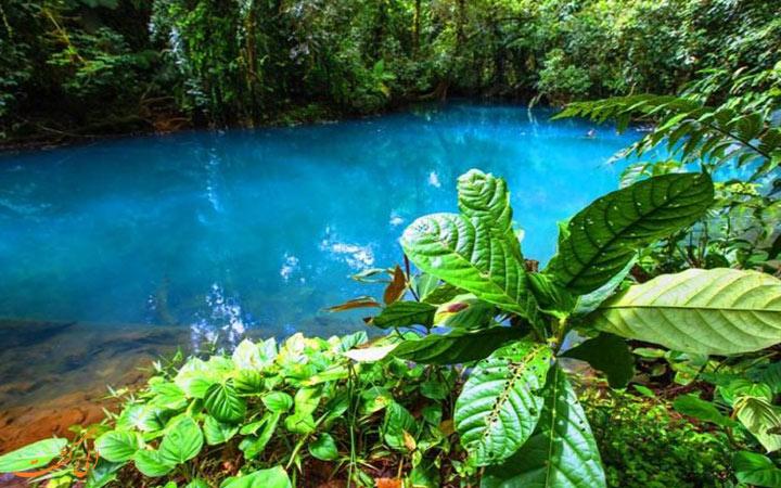 رودخانه فیروزه ای کاستاریکا