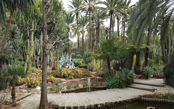 باغ های زیبای نخل