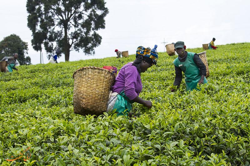 اقتصاد کشور روآندا