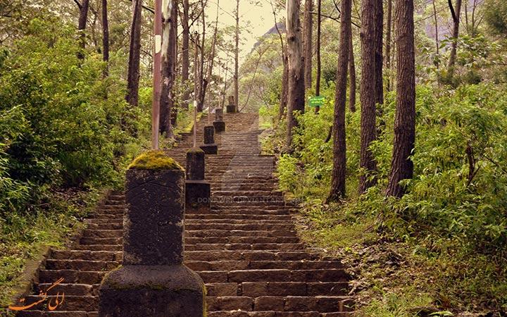 پله های قله آدامز