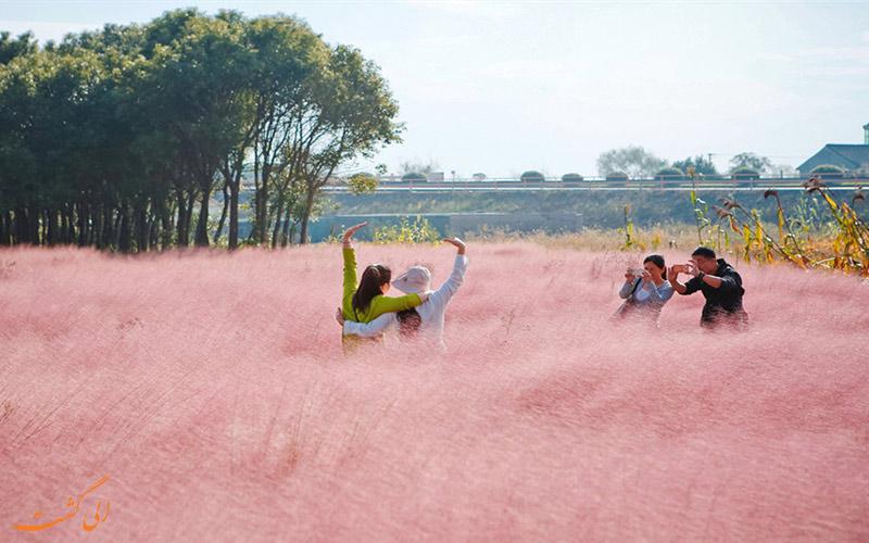 مزرعه ای جالب در چین