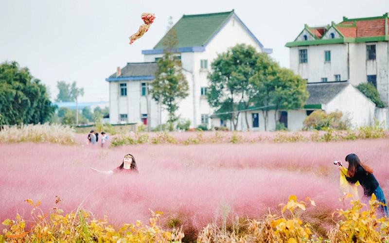 مزرعه در یکی از شهرهای چین